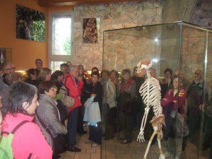 Al Museu de la Prehistòria de Talteüll (Foto: Mateu Butinyà).